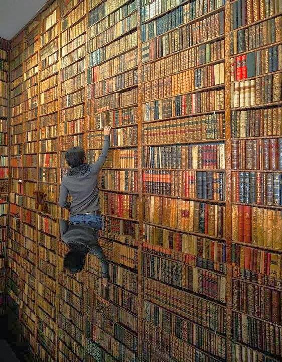Librería para bibliófilos. Madrid Las mejores librerias con MientrasLeo