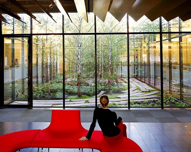 Diseño y naturaleza. Casa con arbol