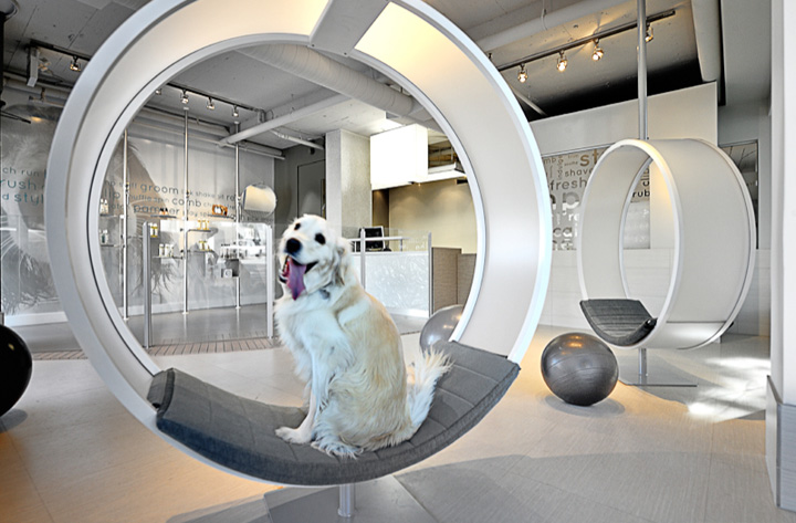 Unleashed-Dog-Spa-Vancouver-03