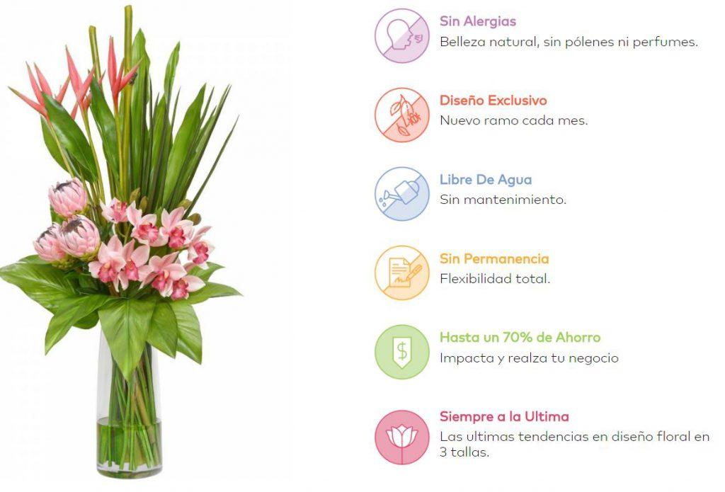 caracteristicas floral image . flores en alquiler