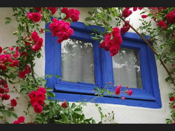 ¡ Trasforma tu terraza al estilo de Al Andalus!