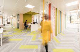 Revista digital para profesionales de arquitectura de for Oficina wizink madrid