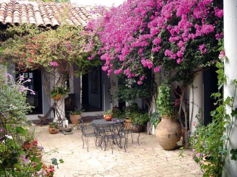 Patios interiores un lugar para evadirse 10decoracion - Plantas para patio interior ...
