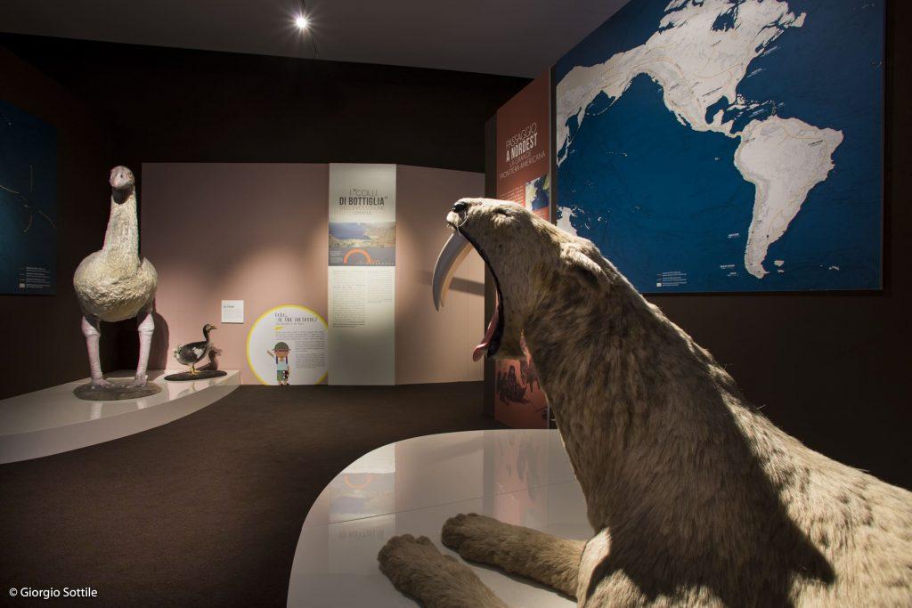 Mostra Homo Sapiens al Mudec.Milano Marisa Coppiano