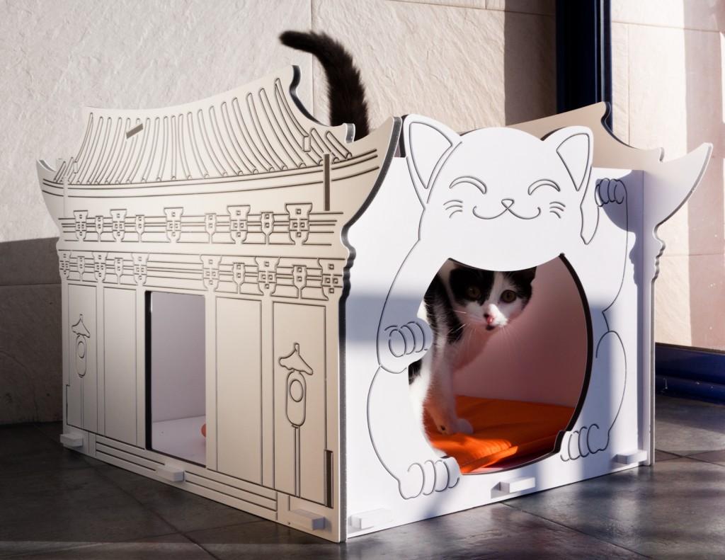casa para gatos prefabricada. casa de mascotas .Casa con mascotas