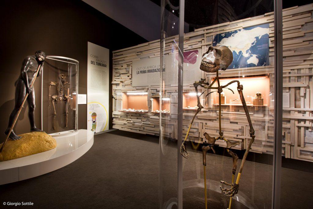Mostra Homo Sapiens al Mudec. Marisa Coppiano