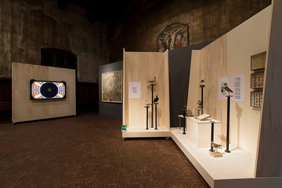 ancora uno sguardo su Darwin e sullo sfondo l'opera di Giuliana Cuneaz
