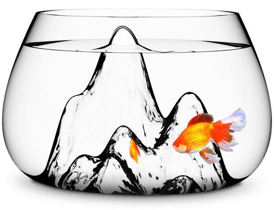 fishscape fishbowl. Pecera de Aruliden para Gaia e Gino
