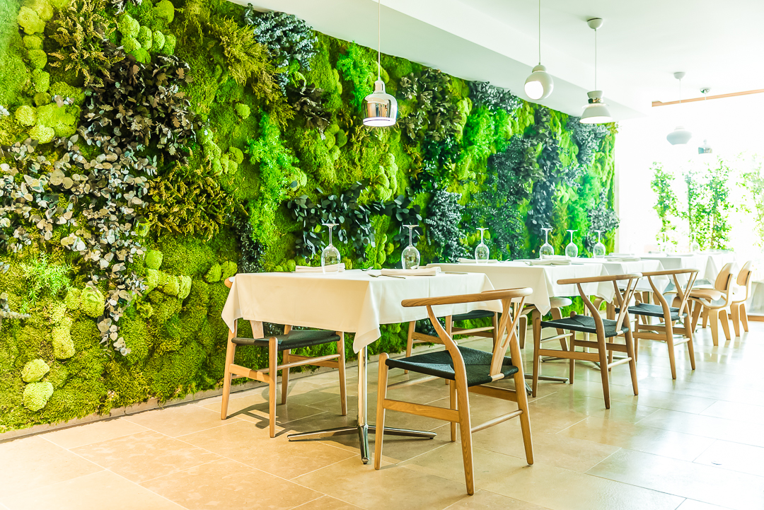 Jardin vertical preservado en Hotel OD Talamanca (Ibiza)