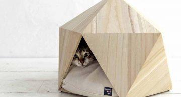 Decoración de una casa con mascotas: Su gran parque de atracciones