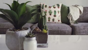 La importancia de los detalles en la decoración del hogar
