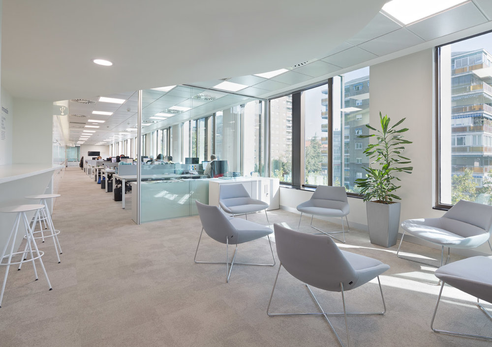 oficinas Reale ubicca_ oficinas del futuro